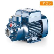110v Pumps