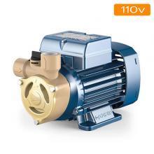 110v Peripheral Pumps